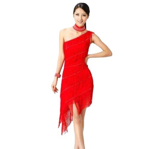 Red Salsa Dress (Sexy Tassel Gowns Salsa Samba Rumba Tango Latin Dance Dress With Ornaments)