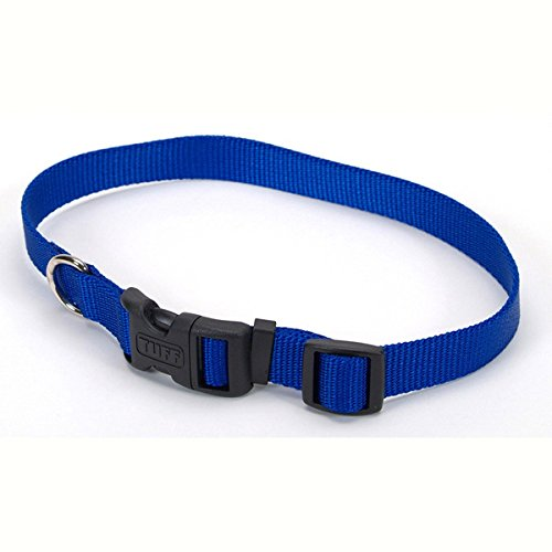 Coastal Pet Products DCP6901BLU 1-Inch Nylon Adjustable Dog Collar, Large, Blue