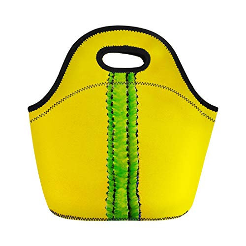 Semtomn Lunch Tote Bag Colorful Pastel Green Cactus on Yellow Minimal Gallery Abstract Reusable Neoprene Insulated Thermal Outdoor Picnic Lunchbox for Men Women