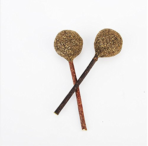 DeroTeno Cat Catnip Lollipoos, 2 PCS Natural Fresh Catnip Stick Compressed Lollipop Fitness Ball Chew Toy for Cats ()