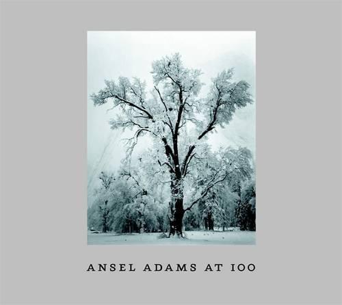 Ansel Adams at 100 (Adam Vase)