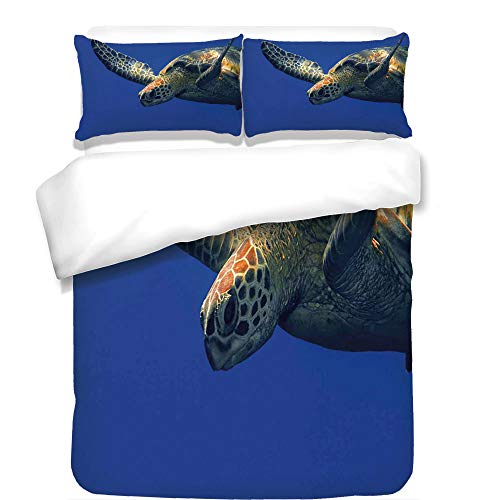 iPrint 3Pcs Duvet Cover Set,Turtle,Close Up Photo of Green Turtle at Sipadan Borneo Malaysia Cute Animal Under The Sea,Blue Yellow,Best Bedding Gifts for Family/Friends (Tattoo Borneo)