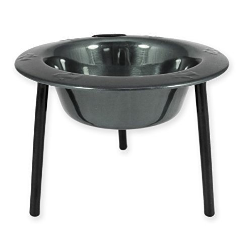 Platinum Pets 1-Cup Single Saucer Feeder with Wide Rimmed Bowl, Black ()