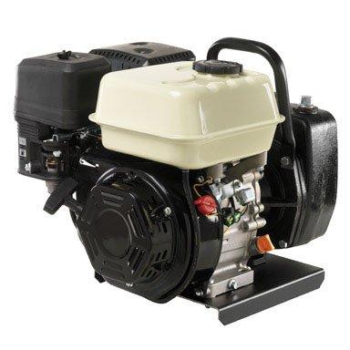 (Wayne 58700-WYN1 Portable Gas-Powered Water Transfer Pump)