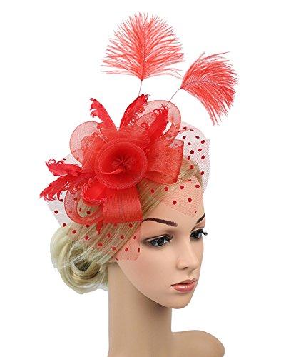 Z&X Fascinator Hat Mesh Flower Feather Derby Hat Dot Veil Party Hat for Ladies/Girls -