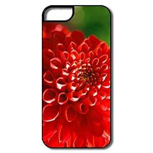 Cool Red Mum Flower IPhone 5/5s Case For Team