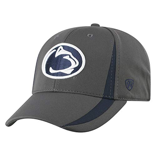 competitive price 001bc 309da Penn State Nittany Lions Fitted Hat at Amazon.com