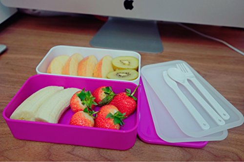 koolsupply lunch box bento box containers with cutlery double stackable boxes leakproof. Black Bedroom Furniture Sets. Home Design Ideas