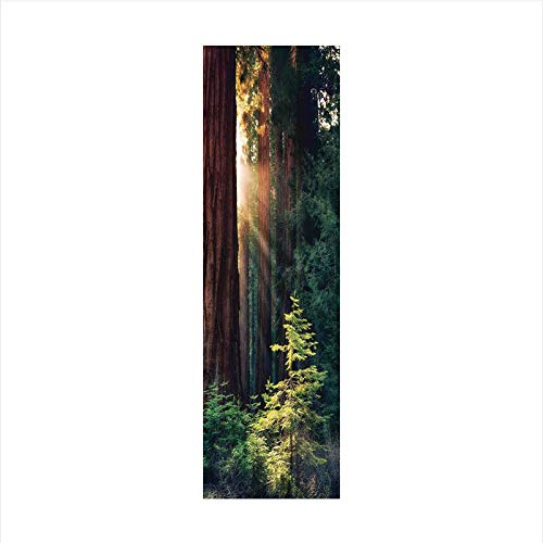 (Decorative Window Film,No Glue Frosted Privacy Film,Stained Glass Door Film,Morning Sunlight in Wilderness Yosemite Sierra Nevada Nature Art,for Home & Office,23.6In. by 78.7In Green Brown)