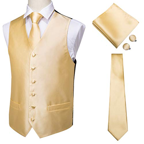 (Hi-Tie Men's 4pc Vest Necktie Pocket Square Cufflinks Set for Suit or Tuxedo More Color for Choose (Gold,)