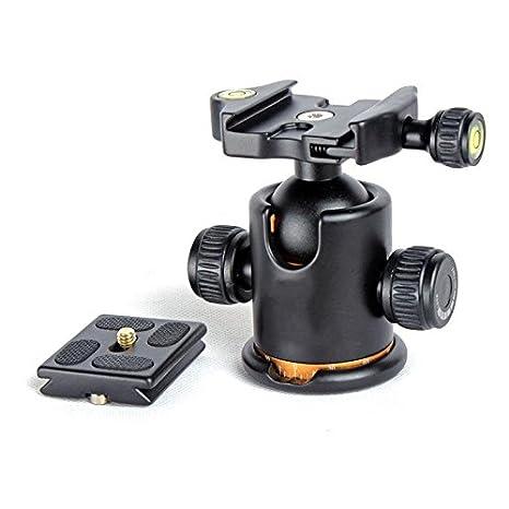 Europa y los Estados Unidos portátil portátil PTZ cámara réflex ...