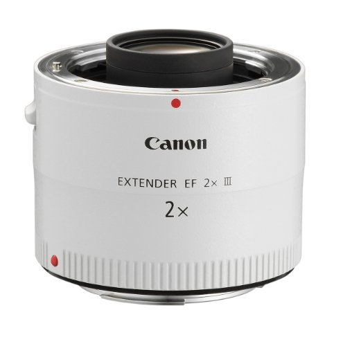 Canon EF 2.0X III Telephoto Extender for Canon Super Telephoto Lenses Portable Consumer Electronics Home Gadget by Portable4All