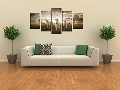 amazoncom canvas prints sk002 modern canvas wall art white horse stretched and framed ready to hang 5 panels white horse canvas print photo canvas art