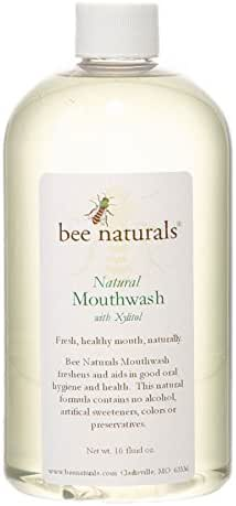 Bee Naturals Mouthwash with Xylitol - All Natural Alcohol Free Formulation - Perfect Mix of Spearmint for Great Breath
