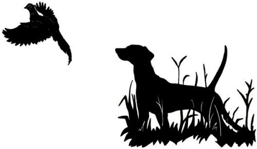 (Pheasant Bird Hunt Decal MD3 Bird Hunting Vinyl Window Truck Stickers, Die Cut Vinyl Decal For Windows, Cars, Trucks, Tool Boxes, Laptops, Macbook - Virtually any Hard, Smooth Surface, White 6 Inch)