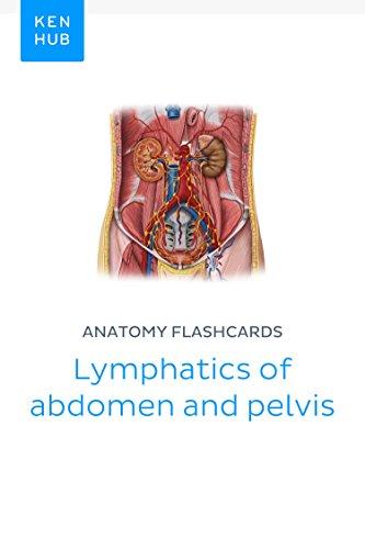 Anatomy Flashcards Lymphatics Of Abdomen And Pelvis Learn All