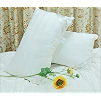 Soft Silker National Standard Long Mulberry Silk Silkworm Filled Pillows