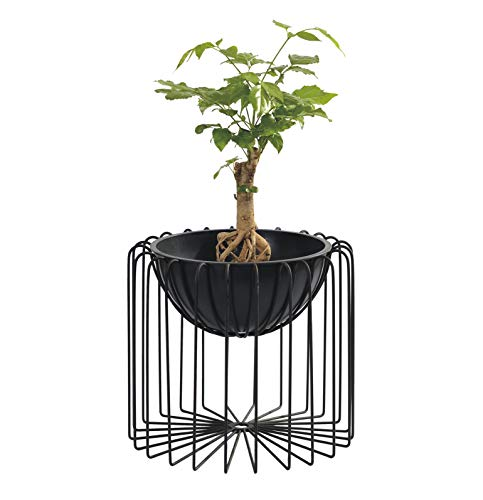 Decozen Decorative Indoor Planter with Metal Stand for Living Room Guest Room Family Room Study Room Hallway Reception Patio Home Decor in Black Color for Live & Feaux Plants