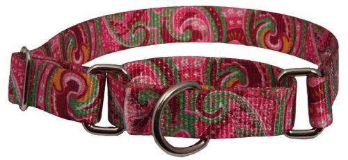 Patterned Martingale Dog Collar-Pink Paisley-M, My Pet Supplies