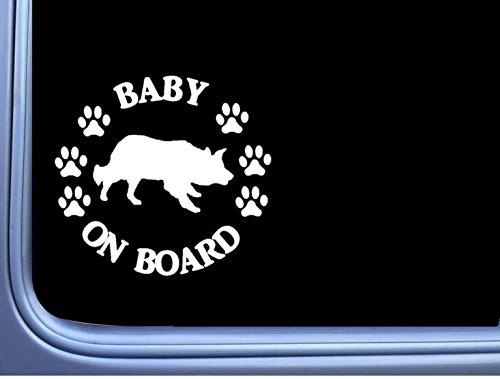 EZ-STIK Baby on Board Border Collie L481 6