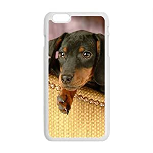 Cute Little Dogs White Phone Case for Iphone6 Plus