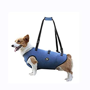 COODEO Dog Lift Harness, Pet Support & Rehabilitation Sling Lift Adjustable Padded Breathable Straps for Old, Disabled… Click on image for further info.