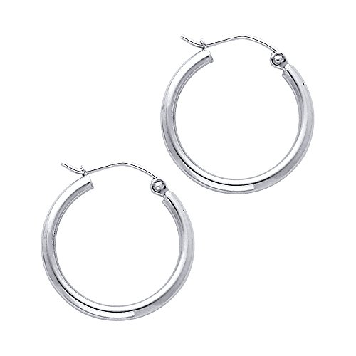 14k White Gold 2mm Thickness Hinged Hoop Earrings (20 x 20 mm) -