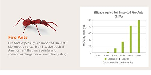 EcoRaider Ant Killer & Crawling Insect Killer (Citrus Scent) 16 OZ, Natural & Non-Toxic by EcoRaider (Image #5)