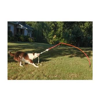 Tether Tug Large - Interactive Dog Toy - Outdoor Dog Toys Large