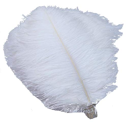 Sowder 50pcs Natural 8-10inch(20-25cm) Ostrich Feathers Home Wedding Decoration(white)