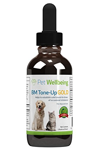 pet-wellbeing-bm-tone-up-gold-dog-diarrhea-support-2oz-59ml