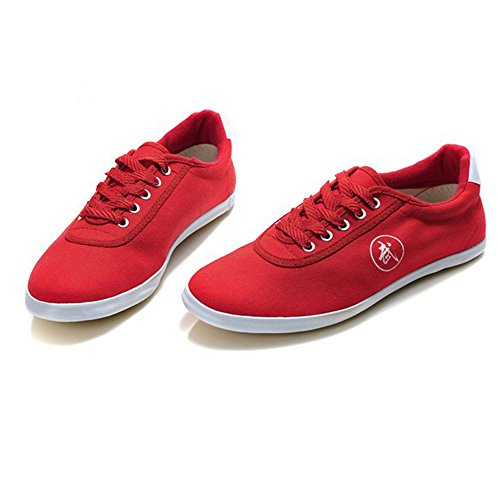 Breathable Taichi Kung Fu Martial Arts Sneakers Canvas Shoes