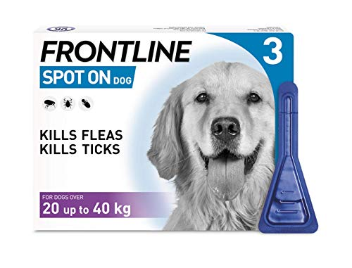 Frontline Spot On Flea and Tick Treatment for Large Dog (20-40kg) 1