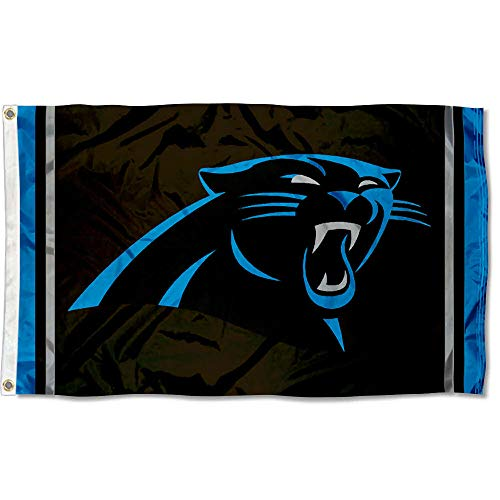 WinCraft Carolina Panthers Large NFL 3x5 Flag