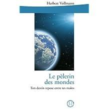 Le pélerin des mondes (French Edition)
