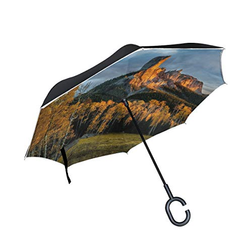 - Reverse Umbrella,Nature Tree Birch Forest Inverted Night Reflective Edge Golf Umbrellas,Double Layered Polyester Canopy,O-Shape Handle