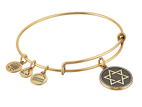 Alex Ani Expandable Bangle A14EB73RG