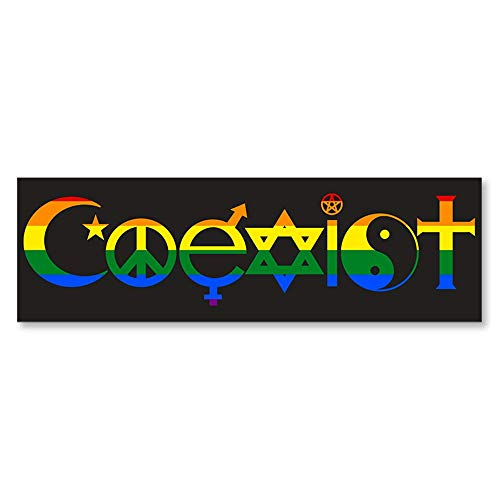 IT'S A SKIN Coexist Pride Flag | Vinyl Sticker Decal for Laptop Tumbler Car Notebook Window or Wall | Funny Novelty Decal