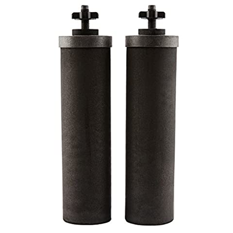 Berkey BB9-2 Replacement Black Purification Elements, Set of 2 - Imperial International Green