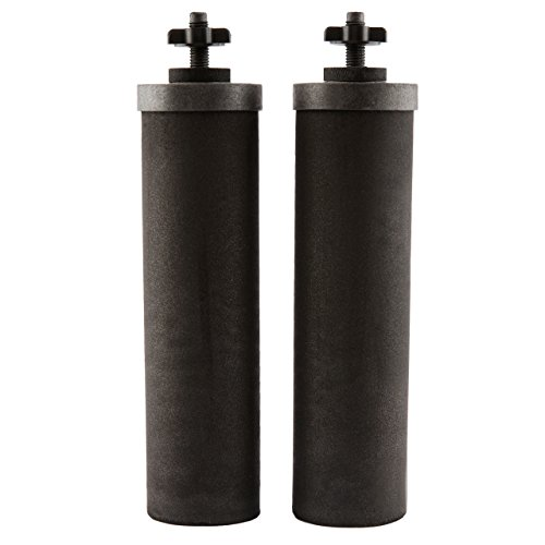 Berkey BB9-2 Replacement Black Purification Elements, Set of 2 by Berkey