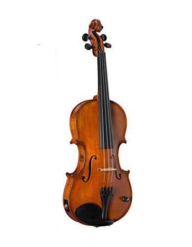 Barcus-Berry Professional Violin, Legendary Series