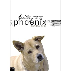 According to Phoenix Audiobook