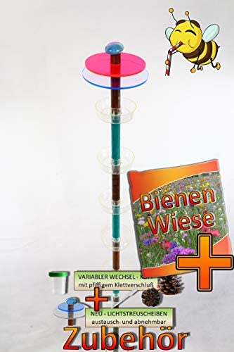 BTV Insekten-6x-Tränkstab Tränke braun-türkis-R XXL 100 cm Bienentränke, LICHTFALLE/Scheibe-BLAU-ROT Bienenfutterstation für Wildbienen, Hummeln Schmetterlinge schwarz anthr