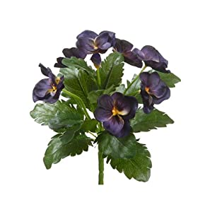"8"" Pansy Bush Eggplant (Pack of 12) 113"