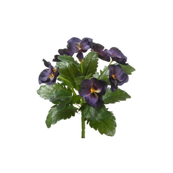 8″ Pansy Bush Eggplant (Pack of 12)