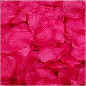 1000pcs Hot Pink Silk Rose Petals Bouquet Artificial Flower Wedding Party Aisle Decor Tabl Scatters Confett 112