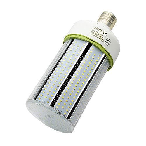 Large Base Led Light Bulbs
