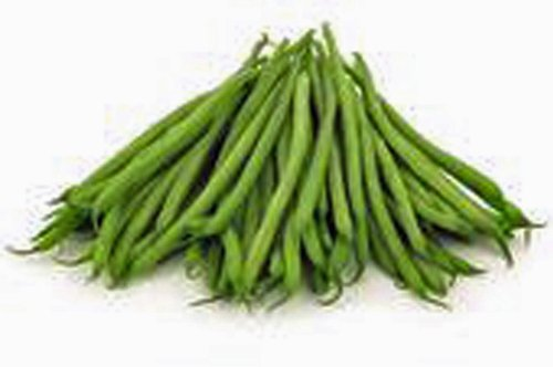 BEAN, KENTUCKY WONDER POLE GREEN BEAN, HEIRLOOM, ORGANIC 100+ SEEDS, CLASSIC BEAN (Kentucky Wonder Pole)