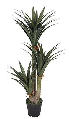 AMERIQUE AM26149YCFT5 Gorgeous 5' Tropical Yucca Artificial Silk Plant with Nursery Plastic Pot