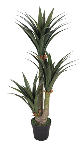 AMERIQUE Gorgeous 5' Tropical Yucca Artificial Silk Plant with Nursery Plastic Pot, Feel Real Technology, Super Quality